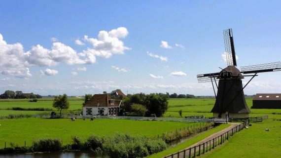 Ispitivanje interesa za poslovanje u Nizozemskoj