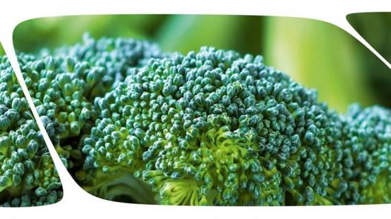 Poziv na Biofach 2020 – međunarodni sajam ekoproizvoda
